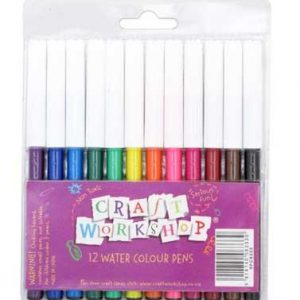 Craft Felt Pens 12 pack