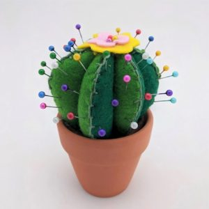 Make Your own Cactus Pin Cushion DIY Craft Kit