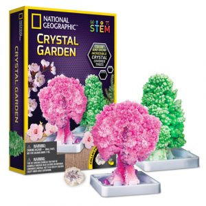 crystal garden stem kit
